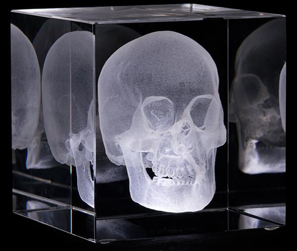 c-skull_B-3q.jpg